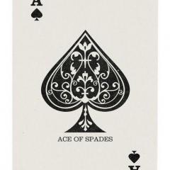 ACE2002